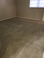 Dave's Carpet & Window Cleaning Saint Louis 13