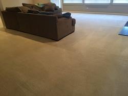 Dave's Carpet & Window Cleaning Saint Louis 19
