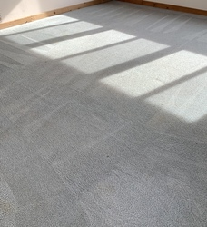 Cherrys Carpet Cleaning Inc Springfield 31
