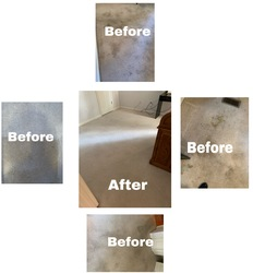 Cherrys Carpet Cleaning Inc Springfield 32
