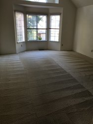 EKO Carpet Cleaning Belmont  10