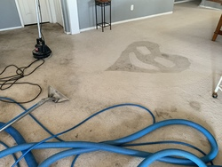 Central Valley Carpet Cleaning Services LLC Patterson 20