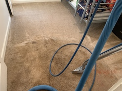 Central Valley Carpet Cleaning Services LLC Patterson 22