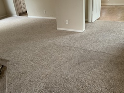 Central Valley Carpet Cleaning Services LLC Patterson 23