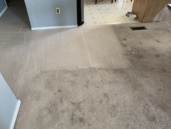 Central Valley Carpet Cleaning Services LLC Patterson 24