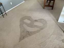 Central Valley Carpet Cleaning Services LLC Patterson 25
