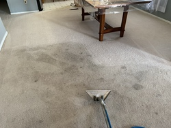 Central Valley Carpet Cleaning Services LLC Patterson 27