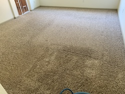 Central Valley Carpet Cleaning Services LLC Patterson 29