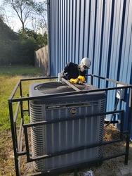 B & E Heating & Air Belvedere 3