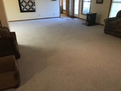 Dave's Carpet & Window Cleaning St. Louis 28