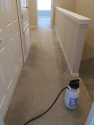Toucan Cleaning Services ORLANDO 20