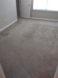 Toucan Cleaning Services ORLANDO 22