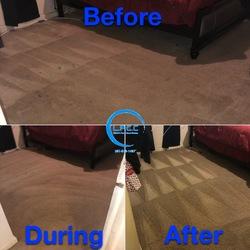 Littleton's Floor & Carpet Cleaning Waldorf 58