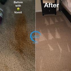 Littleton's Floor & Carpet Cleaning Waldorf 63