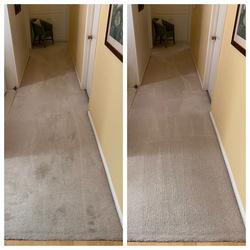 Mega Dry Carpet Cleaning San Diego 4