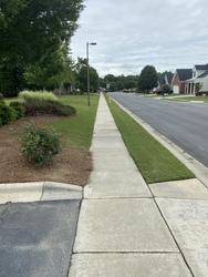 Snyder's carpet tile cleaning Huntersville  49