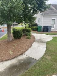 Snyder's carpet tile cleaning Huntersville  59