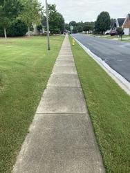 Snyder's carpet tile cleaning Huntersville  65