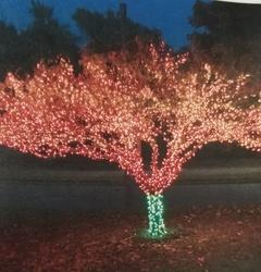 St Nicks Holiday Lighting Fenton 26