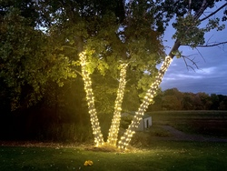 St Nicks Holiday Lighting Fenton 34