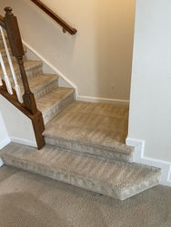 Littleton's Floor & Carpet Cleaning Waldorf 78