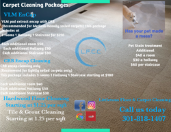 Littleton's Floor & Carpet Cleaning Waldorf 79