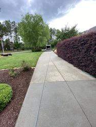 Snyder's carpet tile cleaning Huntersville  116